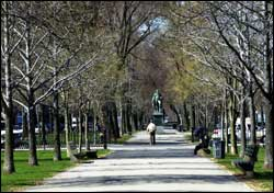 Commonwealth Ave. Mall
