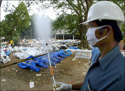 A man wearing a mask moves to spray dead bodies to neutralize the smell in Khao Lak, north of the devastated tourist resort island of Phuket.