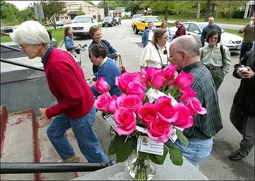 fresh pink roses