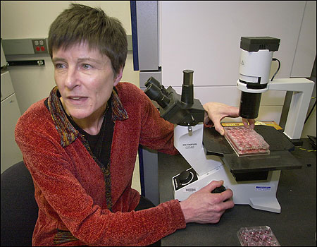 Dr. Catherine Verfaillie, a University of Minnesota scientist, has tried to find a replacement for embryonic stem cells.