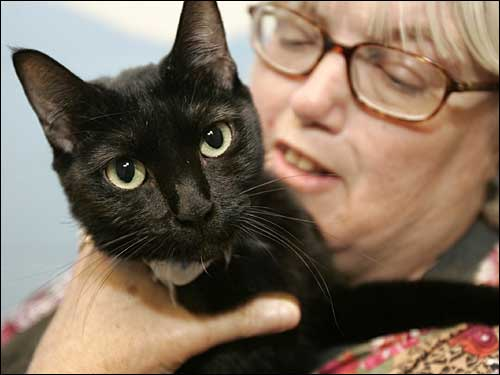 Hurricane Katrina evacuee Debbie Hollis of Biloxi, Miss., helds her cat, Louie, in Little Rock, Ark. She and her family brought 17 cats and a dog to Arkansas when they left their home, and were visiting their pets at a Little Rock animal shelter.