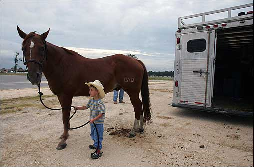 Four-year-old Hadley Dunnelhoo, from Working Spur, La., walked his horse, Hand, from the trailer to the Coushatta Pavilion in Kinder, La., Friday. The pavillion is being used as an evacuation shelter for large animals and is currently housing some 100 animal evacuees.