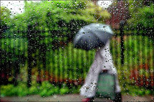 Bracing herself under an umbrella, a woman walked through the rain in Bridgeport, Conn.