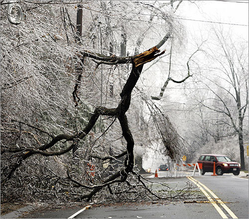 Traffic was re-routed away from tree branches hanging on power lines near a North Andover road.