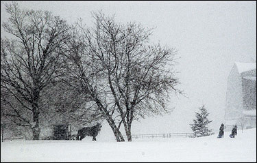 Above, two children walked to school as others rode in a horse-drawn carriage amid heavy snow last month in the Amish community in Smyrna, Maine. At right, an Amish horse-drawn carriage moved along US Route 2 in Smyrna, carrying school children back home.