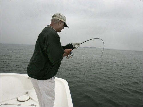 Yaz doesn't have a fishfinder on board his 19-foot skiff because he is a fishfinder. ''Those things don't work anyway,' he says. ''They only spot the baitfish.' He is a hard-core fisherman, out there rain or shine, and he never seems to get skunked.