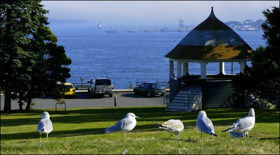 Eastern Promenade Park -- Some seagulls stop to take in the view at Eastern Promenade Park in Portland, Maine. The city maintains the large park with a 1.5-mile paved walkway overlooking the blue expanse of Casco Bay.