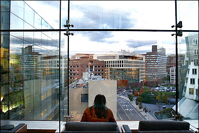 Amy Schneider, an associate at MIT's new McGovern Institute, worked in the Teuber Library, overlooking Cambridge.