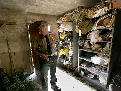 Marijuana cultivation evidence is being held in a bunker at Sequoia National Park, Calif.