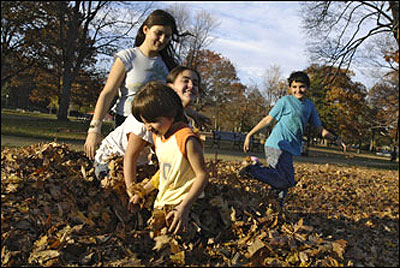 A group of children play in a leaf pile in the city's Elm Park, located on a large square along Highland Avenue. Children are: Kristi Nakollaris, 5, (foreground), Andola Adallia, 12 (smiling), Alexandra Nakollaris, and Stefan Nakollaris, 12, all of Worcester.