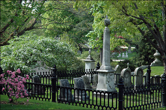 Visit the Mount Auburn Cemetery
