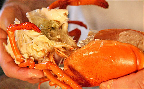 how to eat lobster