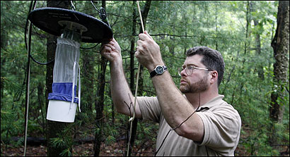Timothy Deschamps, executive director of the Central Massachusetts Mosquito Control Project, checked a trap set up in Hopkinton.
