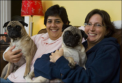 Marianne Monte (left) and Lisa Carcieri plan on getting married in the Bay State. With them are their pugs Gordon and Gus.