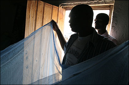 Evangelical missionary health workers carried insecticide-treated mosquito nets distributed in Lubango. The Angolan government says its main focus is fighting malaria.