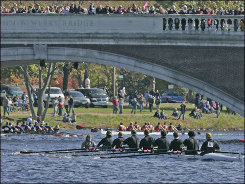 Spectators watched the men's club eight race from the John Weeks Bridge.