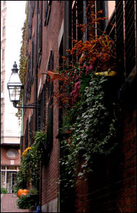 A gas lamp and brownstones on Acorn Street.