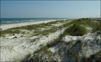 A beach on St. George Island boasts beautiful ocean views and pristine white sand.