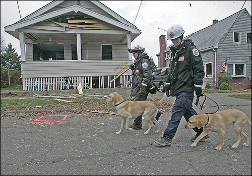 Search dogs and members of the a search and response team scoured the homes in the area for survivors. Amazingly, nobody was killed in the explosion.