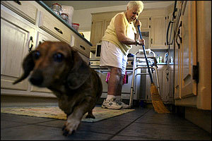 Alone in her daughter's home for the first time since she broke her hip five weeks earlier, Angeline Scardino swept up a pill she had dropped, trying to keep it from her dachshund Symantha.