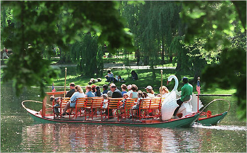 Swan Boats One of the most popular attractions in Boston, the Swan Boats in Boston Common make for a beautiful spot to propose. Cruise among the swans, one of the few animal species that mate for life. DISCUSS Your proposal story?