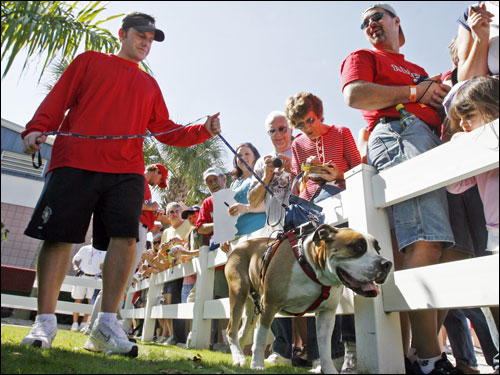 Red Sox clubhouse man Mike Stelmach (left) walked his dog 'Brewzer' around camp with a camera strapped to his back. The dog, who has been a fixture in Fort Myers spring training for a number of years, was wearing a camera so a television station could do a piece on the 'dog's eye view' of the action.