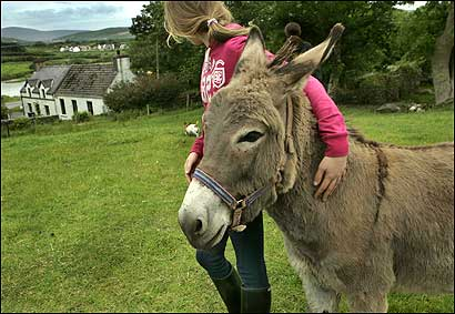 Fiona Griffin with donkey Paddy in Dingle, Ireland, where her Irish-born parents relocated the family after living in Boston.