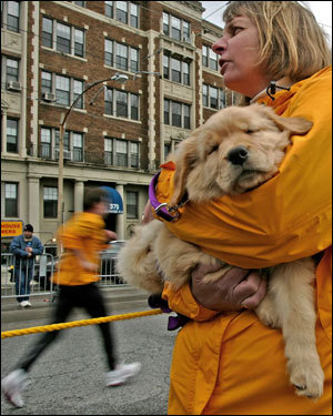 Janet Travers of Travers, cradled her nine-week old puppy as she awaited for friends running the Boston Marathon.