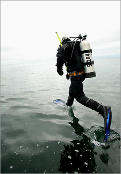 Taking the plunge during a diving expedition lead by Cape Ann Divers