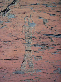 Petrolyph from Machias Bay. Native American shamen chiseled petroglyphs depicting people, events or visions into rock surfaces around the bay.