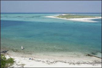 Garden Key; Dry Tortugas National Park, Florida