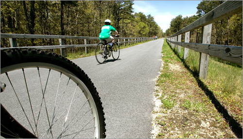 Bikers ride the newly refurbished Cape Cod Rail Trail in Harwich. The state Department of Conservation and Recreation spent $6.2 million fixing the trail these past two winters.