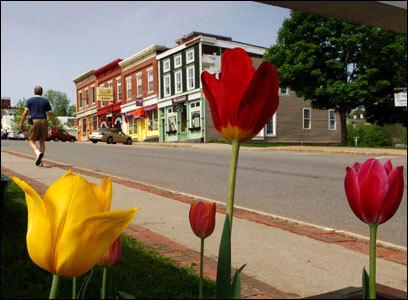 Flowers frame Maine Street in Belfast, Maine.