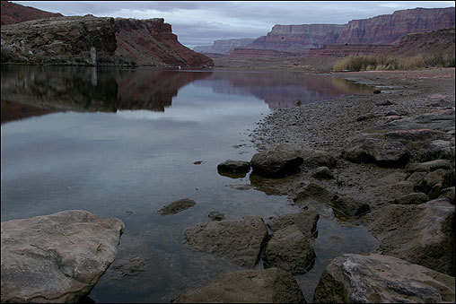After settling into life in St. George, Romney was told by church leaders that he was needed to help settle a Mormon community in Arizona. The Romneys crossed the Colorado River at this spot, where wagons had to be pulled up a rocky ramp known as the Backbone, on the left of this picture. 'Here you can see the river hundreds of feet below you winding its way between perpendicular banks of solid rocks without a tree to be seen and devoid of vegetation,' wrote Catharine Cottam Romney, one of the wives of Miles Park Romney.