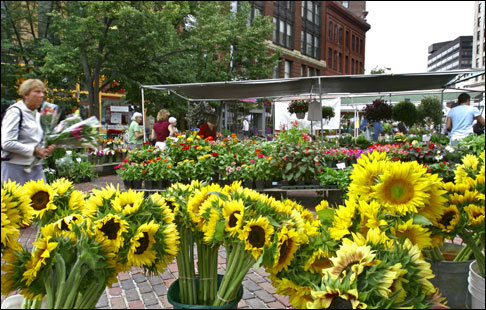 The farmers' market in Portland's Monument Square features fresh produce as well as plants and flowers.