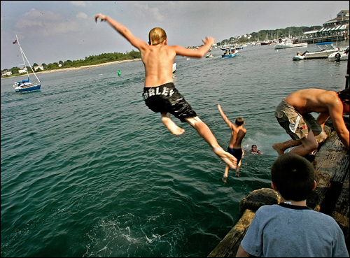 Swimmers jumped off the dock into Scituate Harbor Aug. 4 while waiting for boats to bring in sharks during the first day of the Scituate Heritage Days Shark Tournament.