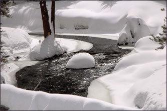 A stream along Glacier Point Road.