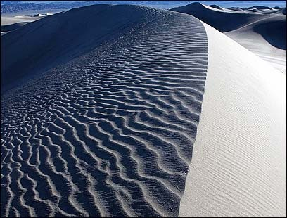 The dunes constantly change shape and form as Death Valley winds relentlessly shift the sand.