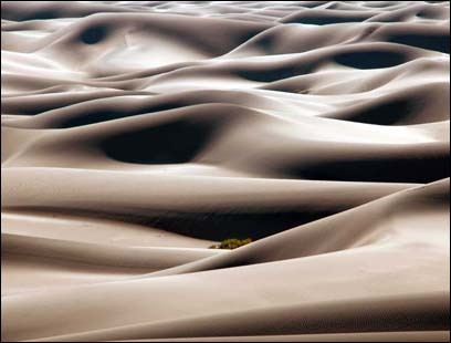 Cloudlike mounds form in Mesquite Flat Dunes, located near Stovepipe Wells in Death Valley, California.