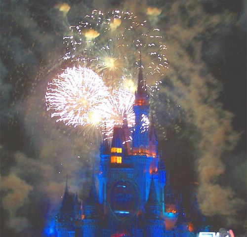 The fireworks are a magical way to end a magical day.