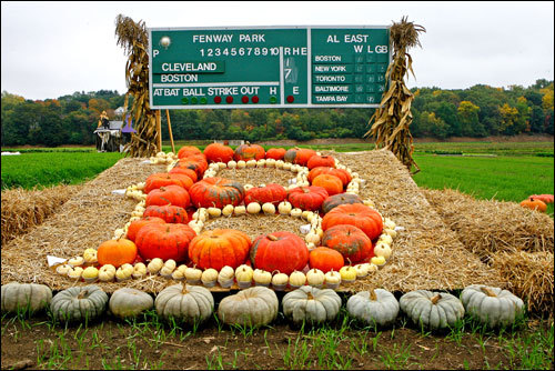A pumpkin and squash tribute to the Sox was on display at Wilson Farm in Lexington.