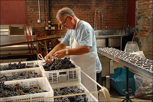 At the Boston Winery in Dorchester, clients – from serious sippers to casual drinkers – can purchase their own blend of grapes and become involved in the yearlong process from first crush to bottling and finally affixing personalized labels. Frank Mirisola sorted through merlot grapes that had just arrived from California.