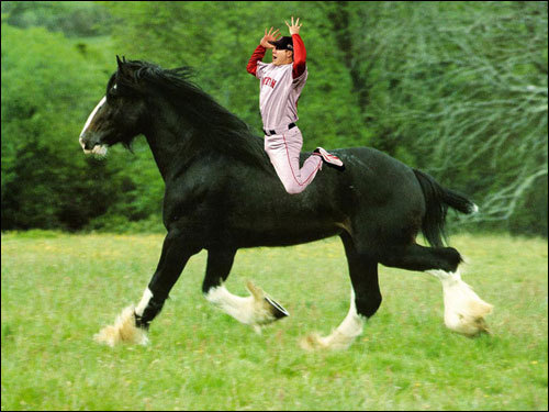 Rupam Som sent in this shot of Jonathan Papelbon 'riding wild'.