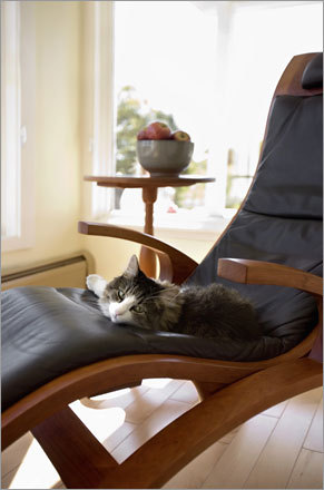 Even the family cat enjoys reclining in a Thos. Moser cherry-and-leather chaise.