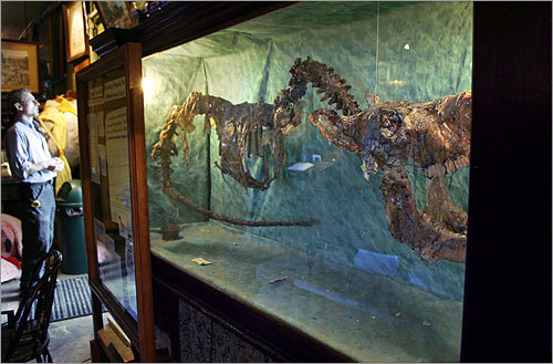 A local 'Loch Ness monster' skeleton on display at the Main Street Museum in White River Junction. Read the story What's nearby: Stay , Play , Eat