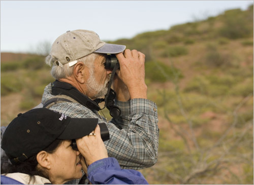Naturalist Pete Pederson and guest Laura Bernstein search for birds in the cacti during a stop on Isla San Francisco. STORY Sampling Baja PLAN Latin America travel guide