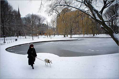 Elizabeth Marcus walked her whippet, Baby, on a cold, gray day in The Public Garden on Feb. 8.