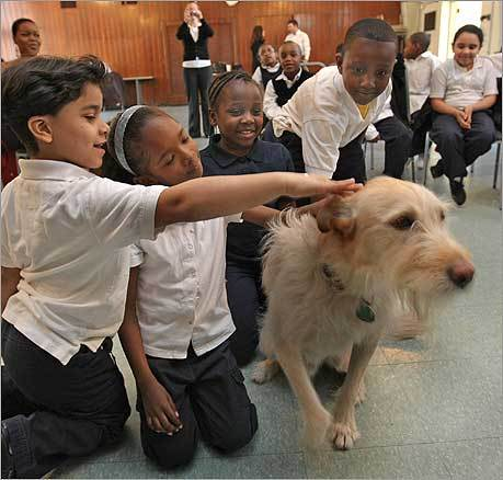 Students from the Boston Renaissance Charter School made a visit to the Animal Rescue League along with Mikey, a dog rescued from a shelter who plays the scruffy mutt 'Sandy' in the 'Annie' musical production in Boston.