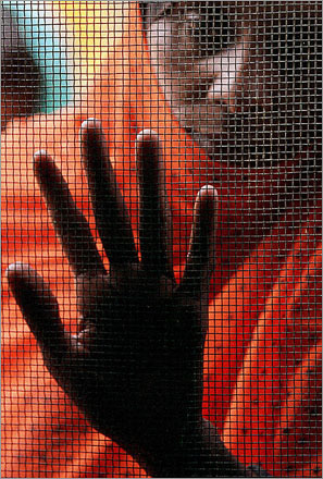A woman looks through a window mesh into the room where Sheik Mohammad Hajj Hamad, sheik of the Kadabas, Sudan mosque, regularly holds audiences.