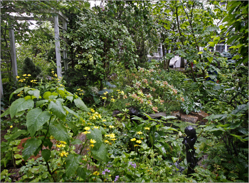 Flowers and vines creep up a trellis in Rice's English garden.